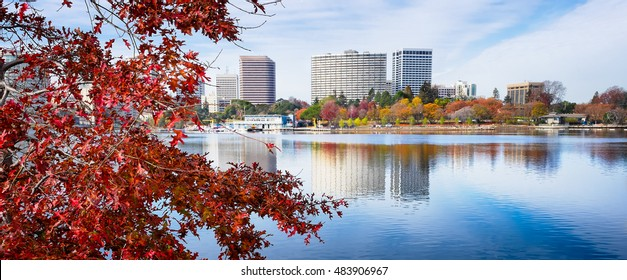 Oakland, CA Lake Merritt view framed by red maple leaf tree in autumn