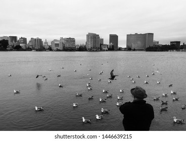 Oakland, California / United States - February 19 2017: Lake Merritt, gloomy day, birds