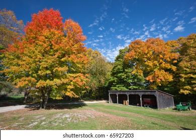 Oakville Park in the Fall, Oakville, Ontario, Canada