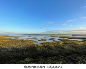 Oare Marshes Nature Reserve, Faversham, UK