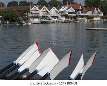 Oars by the river at Henley Royal Regatta