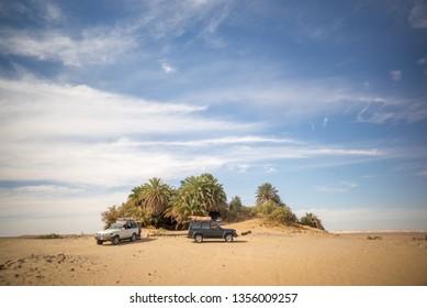 Oasis at desert Bahariya Egypt