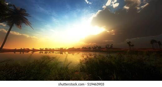 oasis landscape sunset