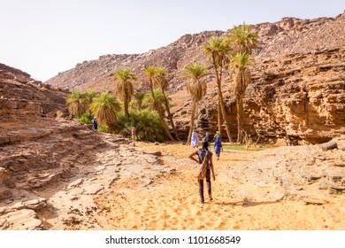 The oasis of Tergit deep in the Mauritanian Sahara