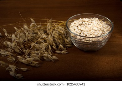 Oat ears stems and oat flakes in a bowl on dark brown wood background. oatmeal flakes coarse. large-sized flakes. Copy space in bottom. Useful fiber-rich product. Dietary breakfast from healthy foods.