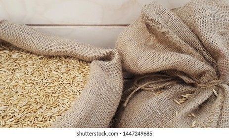 Oat grains in burlap sack, close-up. Malt or wheat Grains. Food and agriculture concept