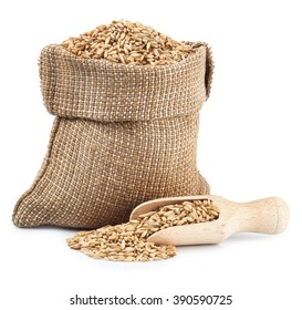 oat grains in burlap sack with wooden spoon isolated on white background