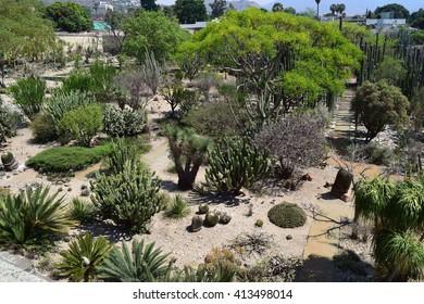 Oaxaca Mexico - 29/04/2016 - Jardin Etnobotanico de Oaxaca