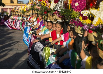 """Oaxaca, Mexico. - July 8, 2016. Musicians playing in front of Santo Domingo church for """"guelaguetza"""" celebration in Oaxaca, Mexico"""