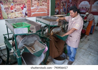 OAXACA, MEXICO - MARCH 6th, 2012: Worker in a chocolate and mole shop  La Soledad packing cocoa beans sacks in Oaxaca, Mexico