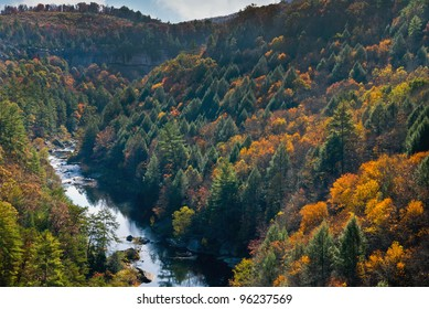 Obed Wild and Scenic River - Shutterstock ID 96237569