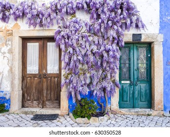 OBIDOS, PORTUGAL – APRIL 02, 2017: Purple wisteria plant growing around doors of an old house in Portugal.