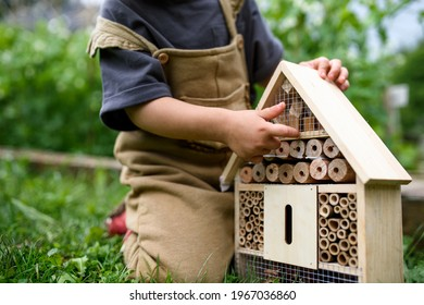 Obscured small child playing with bug and insect hotel in garden, sustainable lifestyle.