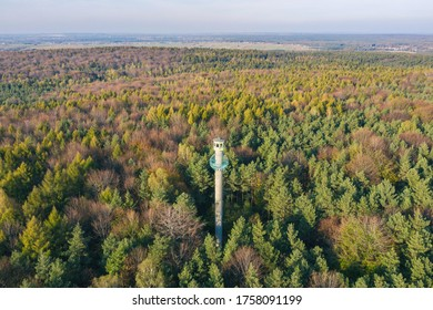 Observation Tower, Fire lookout tower in forest in atumn in Dabrowa Gornicza Silesia Poland aerial drone photo