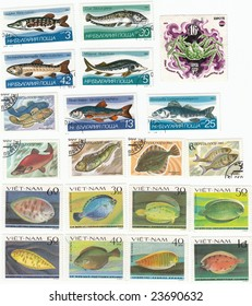 Obsolete postage stamps from Vietnam and Bulgaria. Exotic fishes