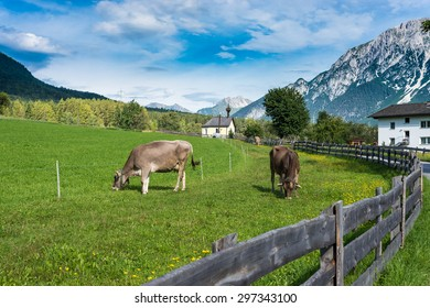Obsteig, a municipality in the Imst district located 15 km northeast of Imst and 3 km above Motz in Sonnenplateau, western Innsbruck, Austria