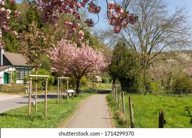 Obstweg in Rueden, Solingen, Germany