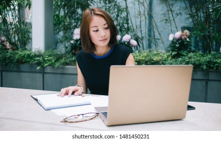 Occupied attractive beautiful ethnic woman with brown hair in black elegant clothes sitting at table and looking at laptop outside in terrace