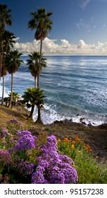 Ocean and coastal landscapes, Laguna Beach