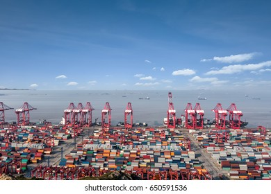 ocean container terminal in shanghai international shipping center, China