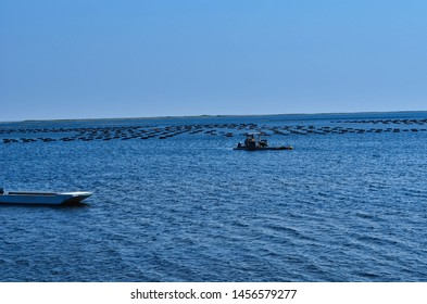 Ocean Fish Farms and Boats Offshore Bouctouche Dunes New Brunswick Canada