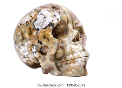 Ocean jasper from Madagascar carved realistic crystal skull  isolated on white background