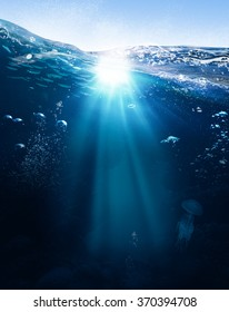 Ocean life illustration  with underwater part full of life and skylight split by waterline