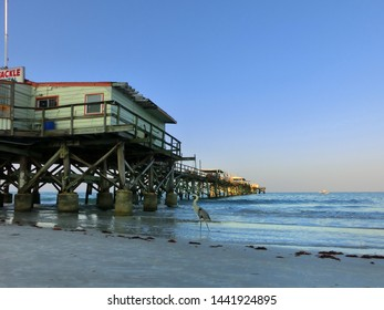 Ocean pier with wooden pilings with heron and beach