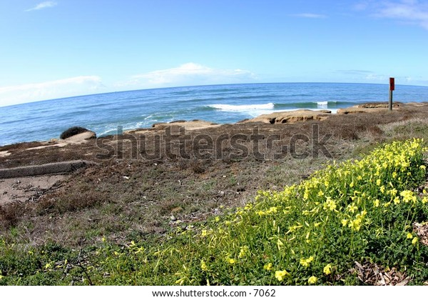 ocean scene framed by rocks and flowers