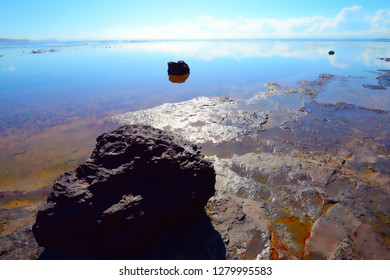 Ocean scenery Long Reef Sydney Australia