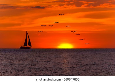 Ocean sunset sailboat silhouette is a boat sailing along the water at sunset with a flock of birds flying overhead.