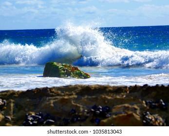Ocean Surf crashing on rocks at low tide