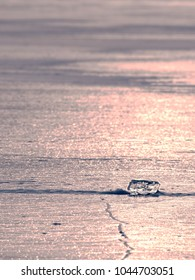 Ocean under transparent ice cover. The sun glare on the flat ice,  sunset colors.