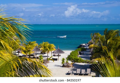 Ocean view over beach and coconut trees