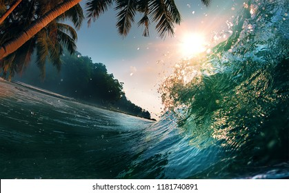 ocean waves palm