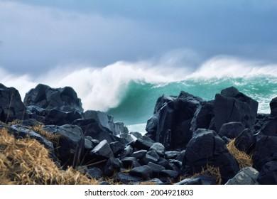 Oceanology. Cyclonic disturbances and ocean storm. Fringing reef. Pacific Ocean. Aleutian-Commander Ridge