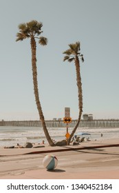 Oceanside Beach, Oceanside California, United States, March 14, 2019 - Vintage-Style Lightroom Edit, Palm Trees with Oceanside Fishing Pier in background