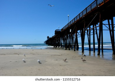 Oceanside, California / USA - March 2018: The underside of the Oceanside Pier with some birds in the photo.