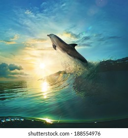 Ocean-view design postcard. Beautiful colorful breaking surfing ocean wave rushing at sunset time and playful dolphin leaping from water with splashes