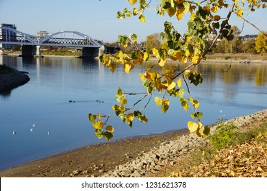 Oct. 2018: Beautiful autumn day on Parkinsel, Ludwigshafen am Rhein, Germany. Parkinsel island is one of the most popular recreation areas located between Ludwigshafen and Mannheim, near Heidelberg.
