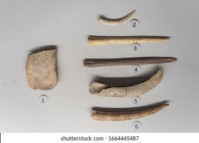 October 16, 2020, Handan, China: Bone tool: Shovel, Awl, Spindle, Tooth-Shaped Awl. Ancient Chinese Early and Middle Neolithic (8400-7400 BC). Unearthed from, Handan, Hebei Province.