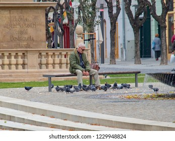 October 26, 2018, Trencin, Slovakia A man in middle science sitting on a bench is surrounded by a pigeon's flock.He watches them as they feed on the roasted rocks.