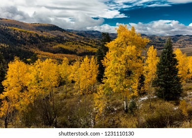 OCTOBER 8, 2014 - Colorado, USA - Autumn Color in Colorado, Landscape