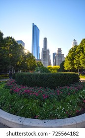 October 8, 2016 - Chicago skyline view and a garden from Grant Park