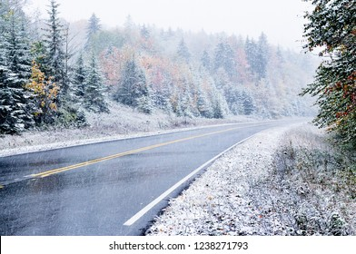 October snow and fall color along the Highland Scenic Highway, National Scenic Byway, Pocahontas County, West Virginia, USA