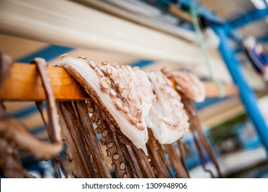 Octopus hanging out to dry on the greek peninsula Pilion