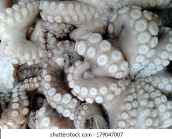 Octopus on a market stall