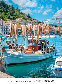 octopus tentacles hangingon a cable to dry  with sea traditional boats and buildings on the background in Gytheio Peloponnese greece