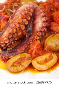 Octopus with tomato sauce and olives, one portion, close up, isolated on white background