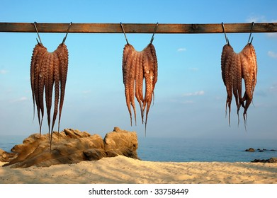 Octopuses hanging to dry in a small village in Greece